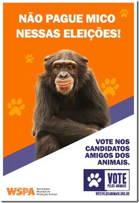santinhos_macaco